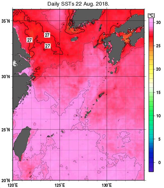 東シナ海の海水温