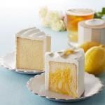 豆乳クリームとマーブルリモン、タリーズの新シフォンケーキのカロリーは? いつまで販売?